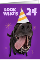 Happy 24th Birthday Funny Dog in Party Hat Humor card