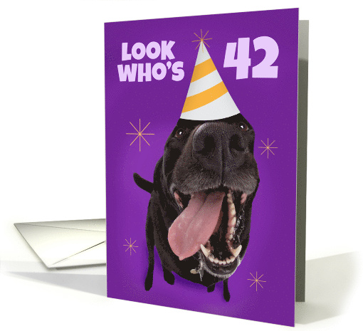 Happy 42nd Birthday Funny Dog in Party Hat Humor card (1565946)