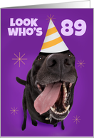 Happy 89th Birthday Funny Dog in Party Hat Humor card