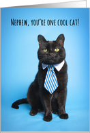 Happy Father's Day Nephew Cute Cat in Blue Tie Humor card