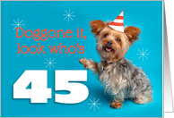 Happy 45th Birthday Yorkie in a Party Hat Humor card