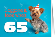 Happy 65th Birthday Yorkie in a Party Hat Humor card