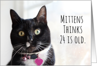 Happy Birthday Humor Cat Thinks 24 is Old card