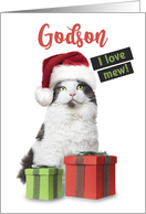 Merry Christmas Godson Cute Cat With Presents card