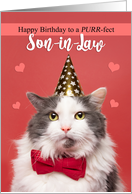 Happy Birthday Son-in-Law Cute Cat in Party Hat and Bow Tie Humor card