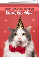 Happy Birthday Great Grandpa Cute Cat in Party Hat and Bow Tie Humor card