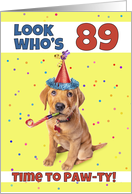Happy 89th Birthday Cute Puppy in Party Hat Humor card
