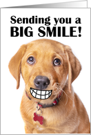 Thinking of You Big Smile Funny Puppy Coronavirus Pandemic card