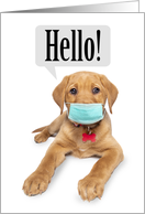 Thinking of You Cute Puppy in Face Mask Coronavirus Humor card