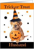 Happy Halloween Husband Cute Puppy in Costume Humor card