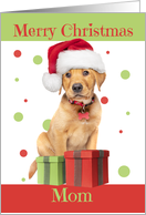 Merry Christmas Mom Cute Lab Puppy in Santa Hat Humor card