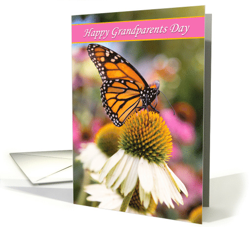 Happy Grandparents Day Beautiful Monarch Butterfly Photograph card
