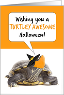 Happy Halloween Turtle in Witch Hat and Face Mask Humor card