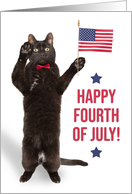 Happy Fourth of July Cite Cat Holding Flag and Saluting card