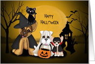 Halloween for Young Child, Puppies Dressed in Costumes, a Cat card