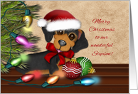 Merry Christmas for Stepson, Dachshund Wearing a Santa Hat card