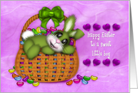 Happy Easter for a Sweet Little Boy, Bunny Basket Full of Jelly Beans card