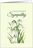 General With Sympathy White Snowdrops Watercolor Illustration card
