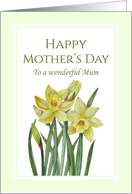 For Mum on Mother's Day Watercolor Yellow Daffodils Illustration card