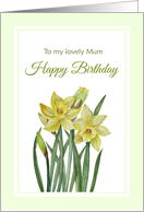 For Mum on Birthday Watercolor Yellow Daffodils Illustration card