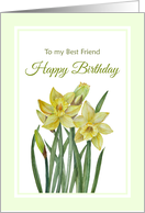 For Best Friend on Birthday Watercolor Yellow Daffodils Illustration card